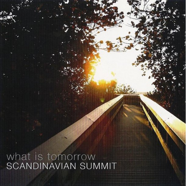 Scandinavian Summit - What is tomorrow